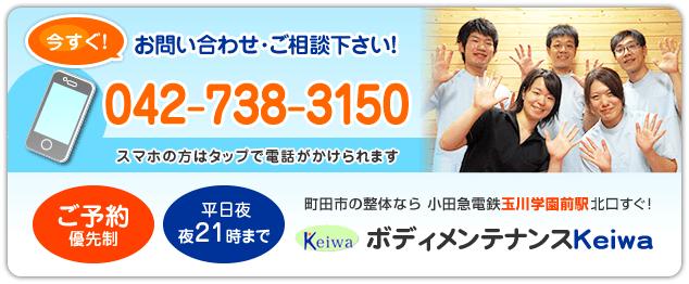 電話番号:042-738-3150